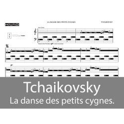 Tchaikovsky - La danse des petits cygnes